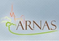 Logo de la ville d'Arnas